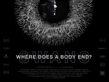 Swans: Where Does A Body End?
